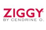 Ziggy logo 150x100