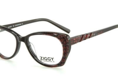 Ziggy-1620-C3-800x400