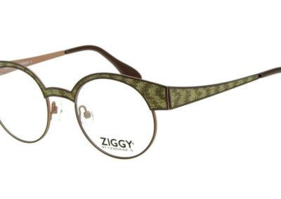 Ziggy-1776-C3-800x400