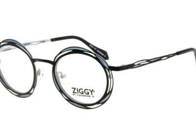Ziggy-1809-C1-800x400