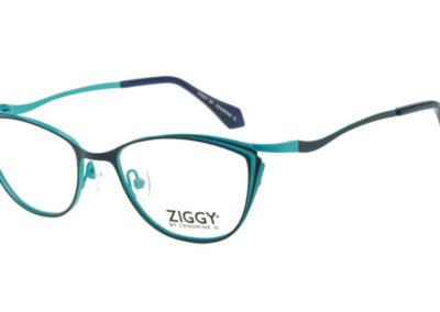 Ziggy-1813-C3-800x400