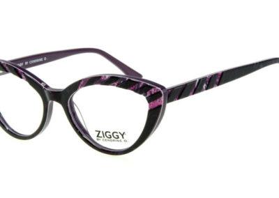 Ziggy-1814-C3-800x400