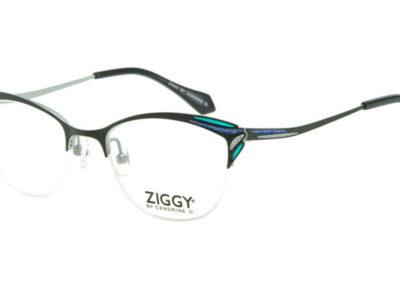 Ziggy-1827-C3-800x400
