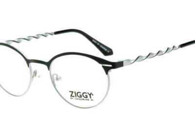 Ziggy-1924-C1-800x400