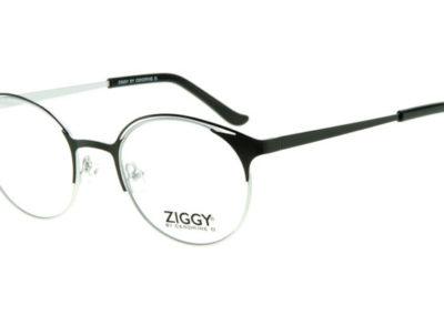 Ziggy-1929-C1-800x400